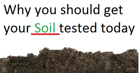 Photo of Importance of soil testing