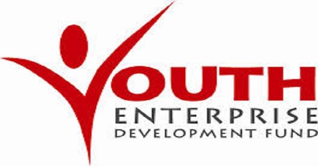 yedf-logo