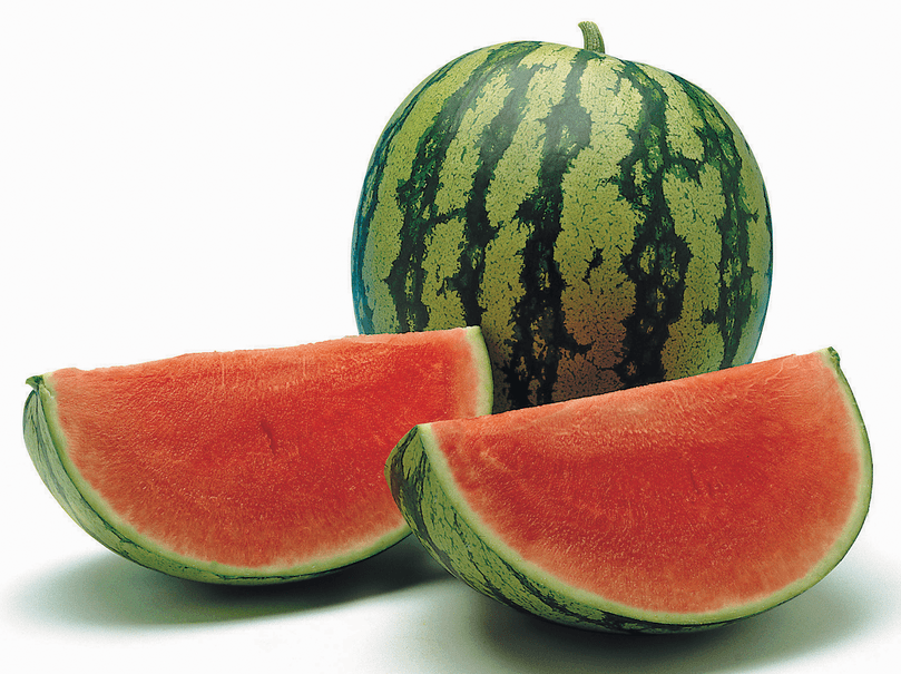 watermelon-farming-in-kenya