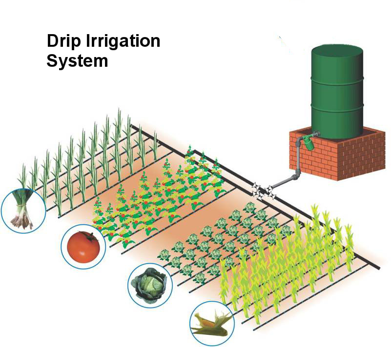 No irrigation raised bed gardening system hugelkultur diy garden drip irrigation system 2017 - How to design an irrigation system at home ...