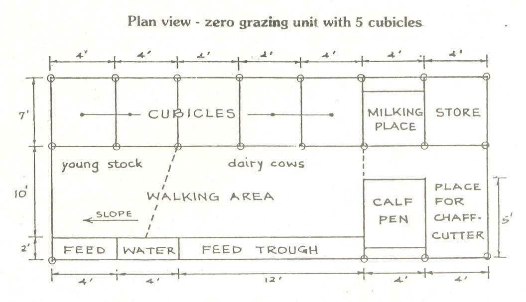 zero-grazing-unit-5