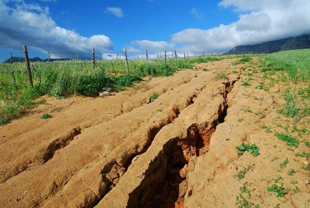 Photo of Soil Conservation Techniques