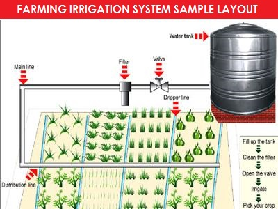 Photo of Advantages of drip irrigation systems