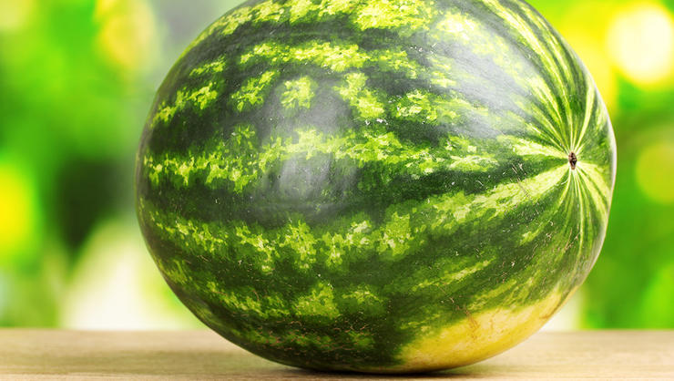 Photo of How to Know if a Watermelon is Ready for Harvest