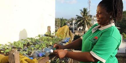 Photo of 5 Agribusiness Tips For Beginner Farmers