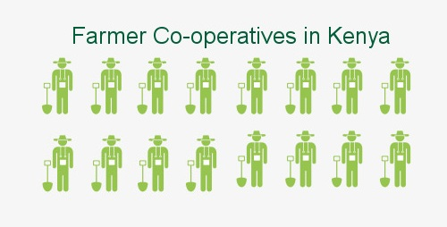 Photo of Farmer Co-operatives You Can Join In Kenya