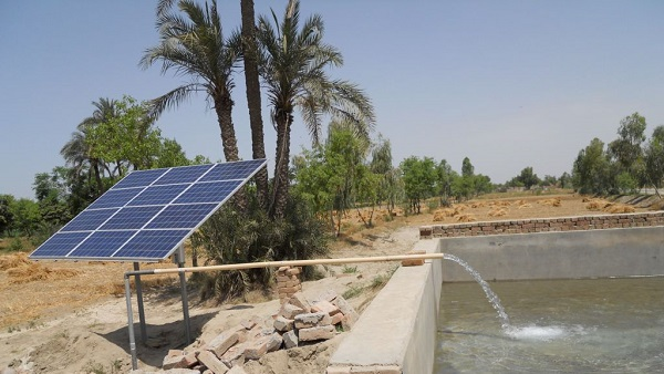 Photo of Irrigation Made Easy Using Solar Pumps