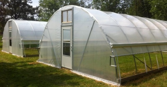 Photo of Benefits of Greenhouse Farming