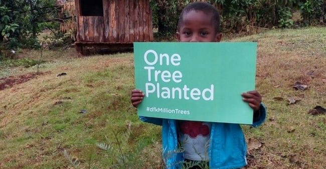 Photo of DFK: This Facebook Group is planning to grow one million trees and bring back Kenya's green
