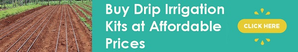 Buy Drip Irrigation Kits