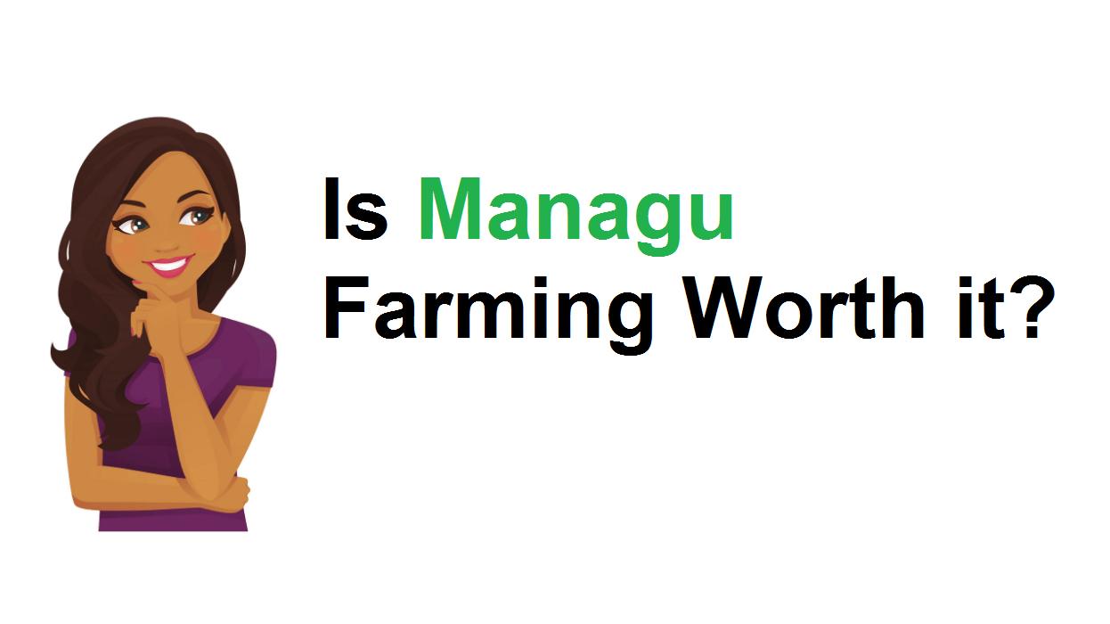 Photo of Is Managu farming worth it?