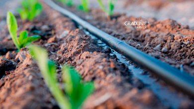 cost of drip irrigation in kenya