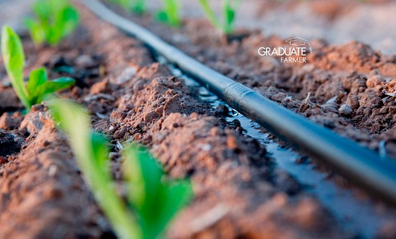 cost of drip irrigation in kenya